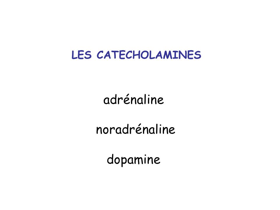 LES CATECHOLAMINES adrénaline noradrénaline dopamine