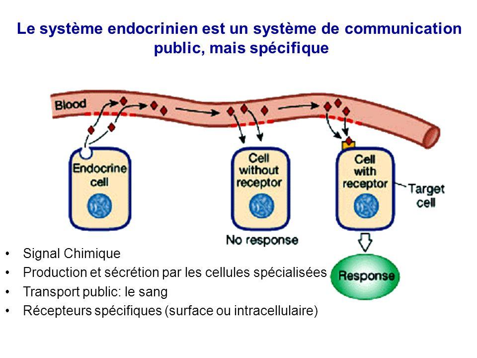 Le système endocrinien est un système de communication