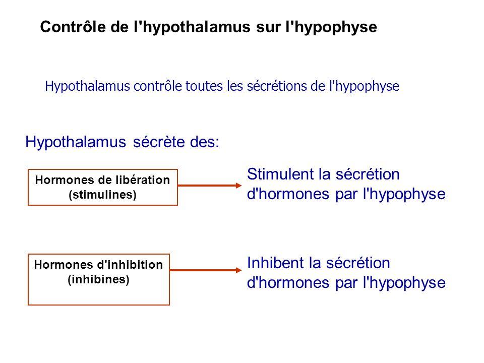 Hormones de libération (stimulines) Hormones d inhibition (inhibines)
