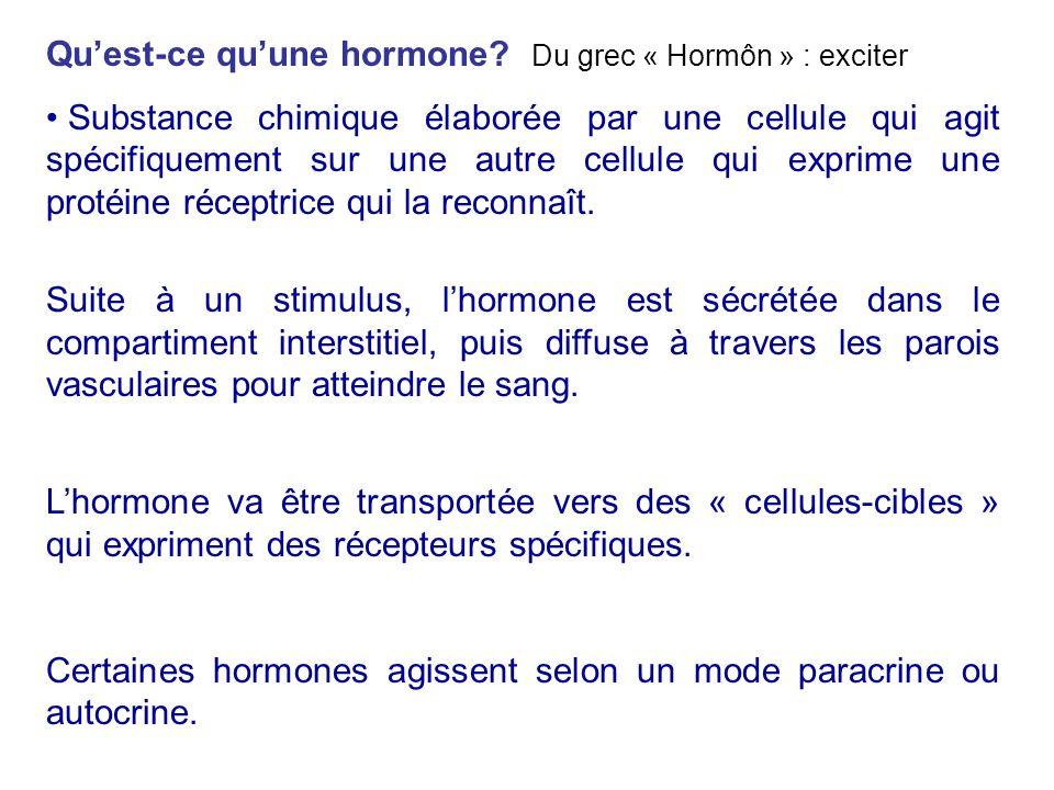 Qu'est-ce qu'une hormone Du grec « Hormôn » : exciter