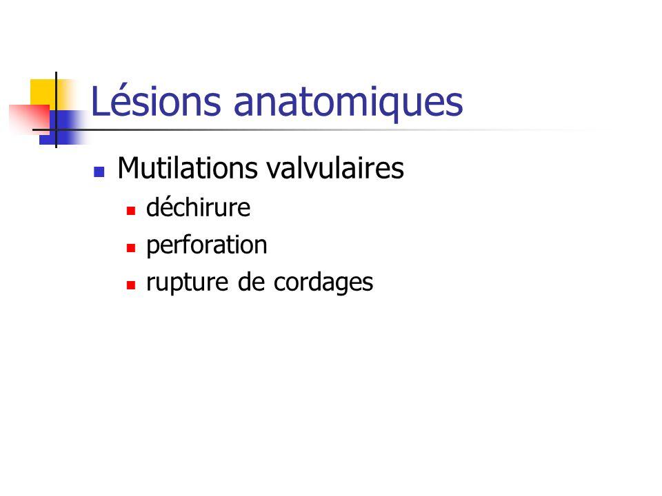 Lésions anatomiques Mutilations valvulaires déchirure perforation