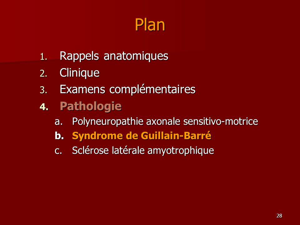Plan Rappels anatomiques Clinique Examens complémentaires Pathologie