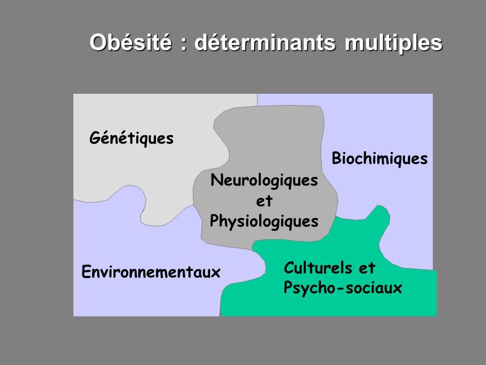 Obésité : déterminants multiples