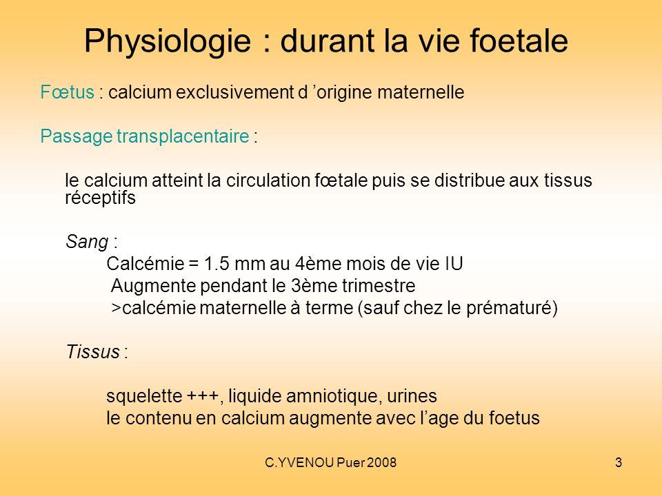 Physiologie : durant la vie foetale