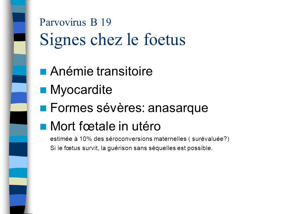 Parvovirus B 19 Signes chez le foetus