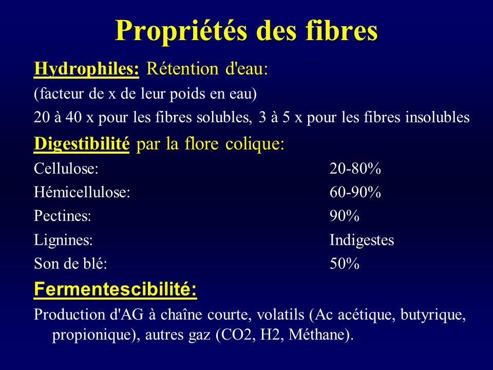 Propriétés des fibres Hydrophiles: Rétention d eau: