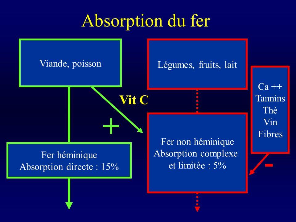 + - Absorption du fer Vit C Viande, poisson Légumes, fruits, lait
