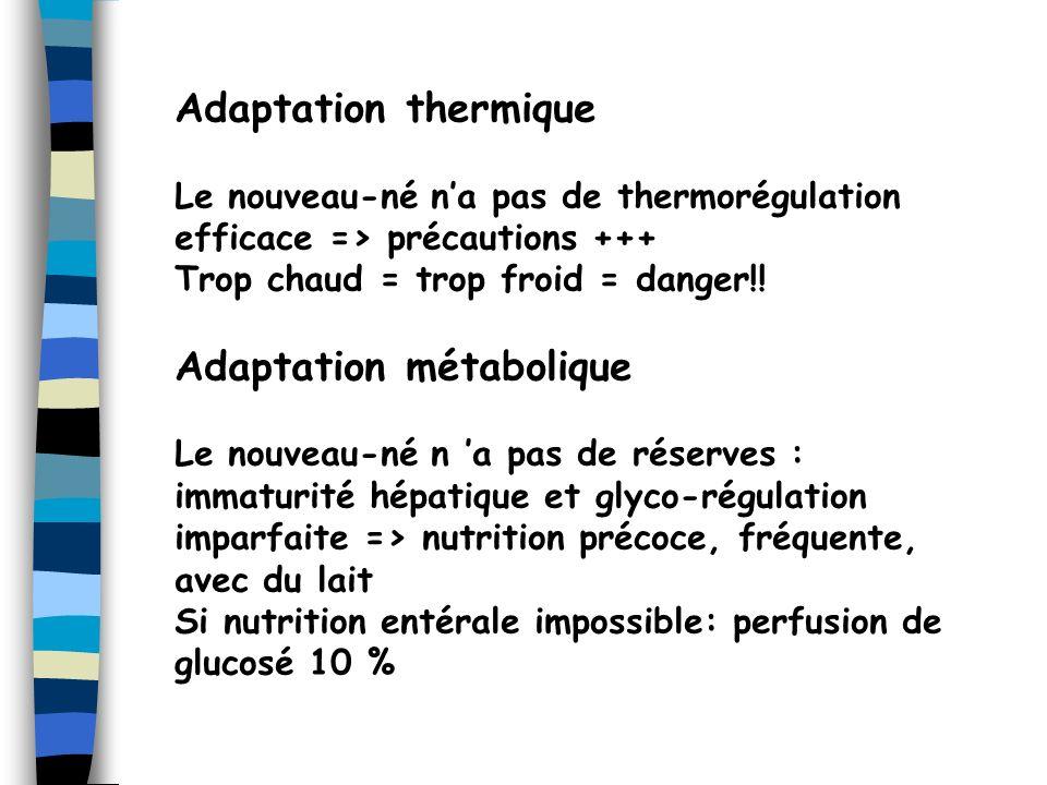 Adaptation métabolique