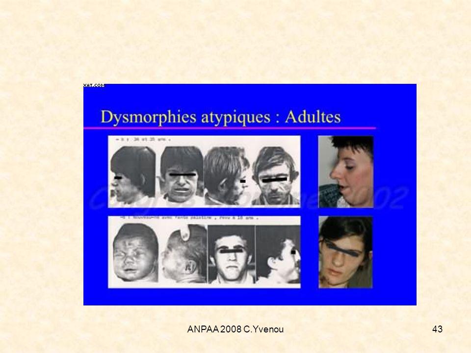 ANPAA 2008 C.Yvenou