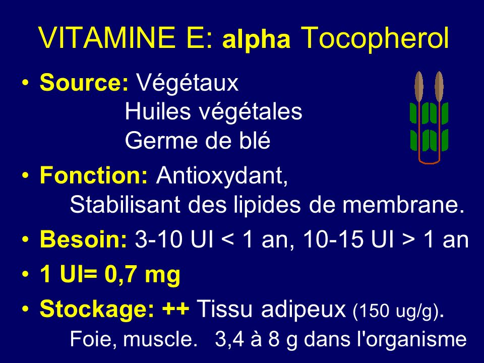 VITAMINE E: alpha Tocopherol