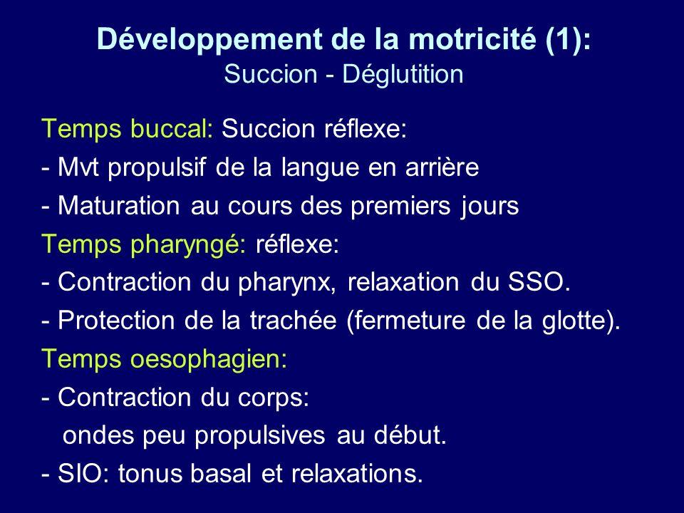 Développement de la motricité (1): Succion - Déglutition