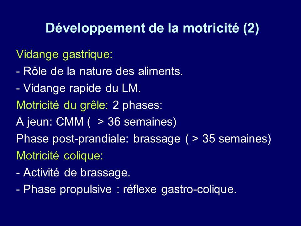 Développement de la motricité (2)