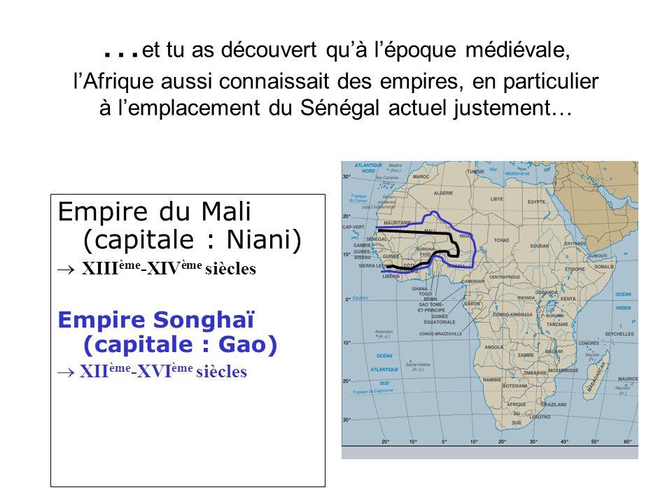 …et tu as découvert qu'à l'époque médiévale, l'Afrique aussi connaissait des empires, en particulier à l'emplacement du Sénégal actuel justement…