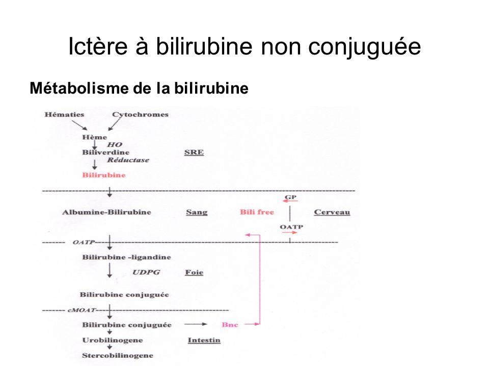 Ictère à bilirubine non conjuguée
