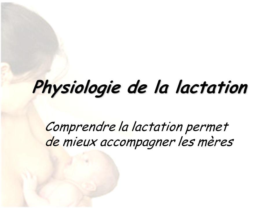 Physiologie de la lactation