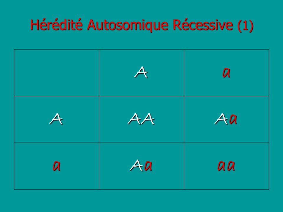 Hérédité Autosomique Récessive (1)