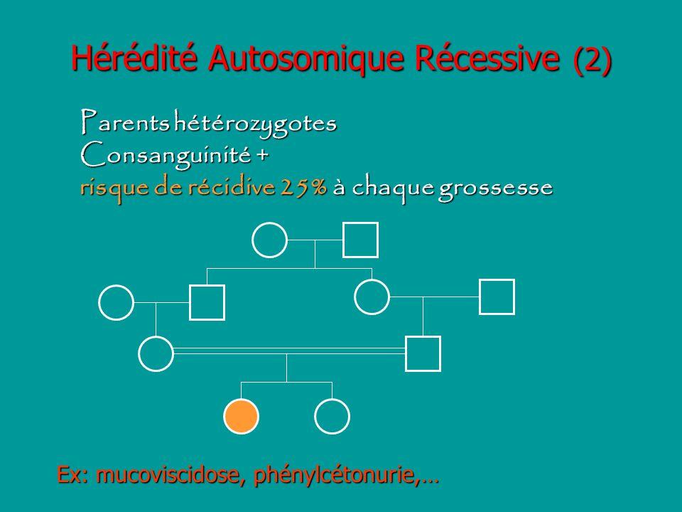 Hérédité Autosomique Récessive (2)