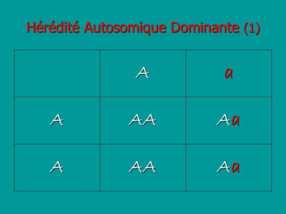 Hérédité Autosomique Dominante (1)