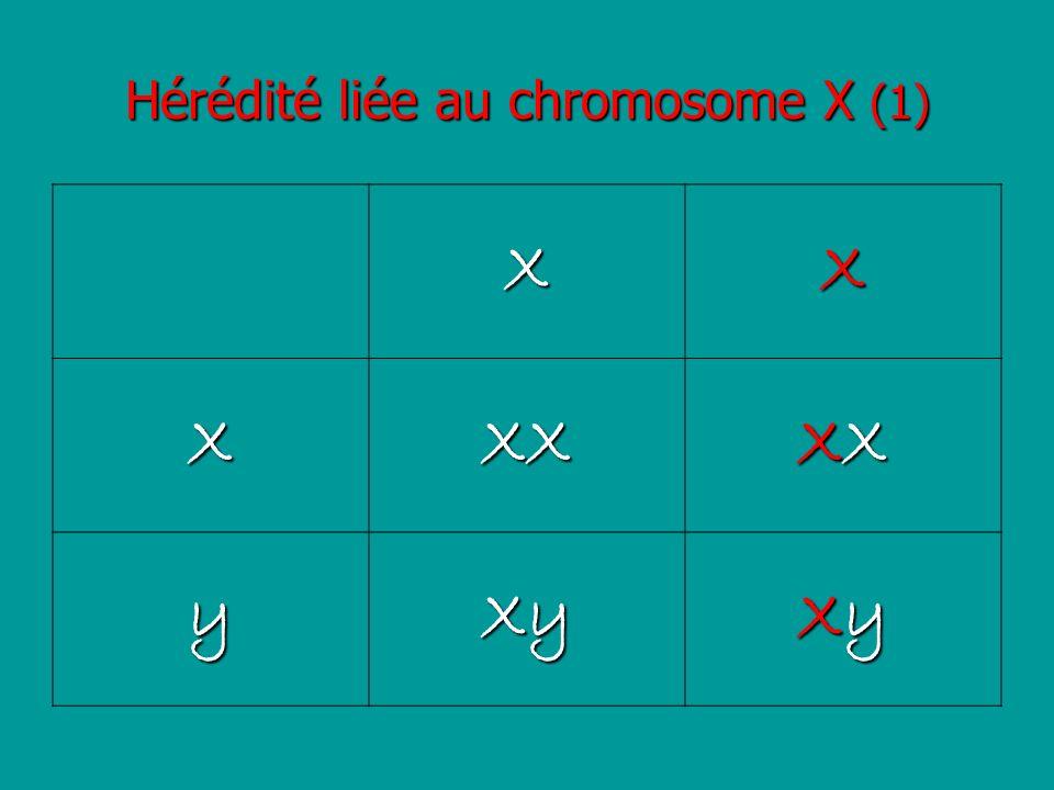 Hérédité liée au chromosome X (1)