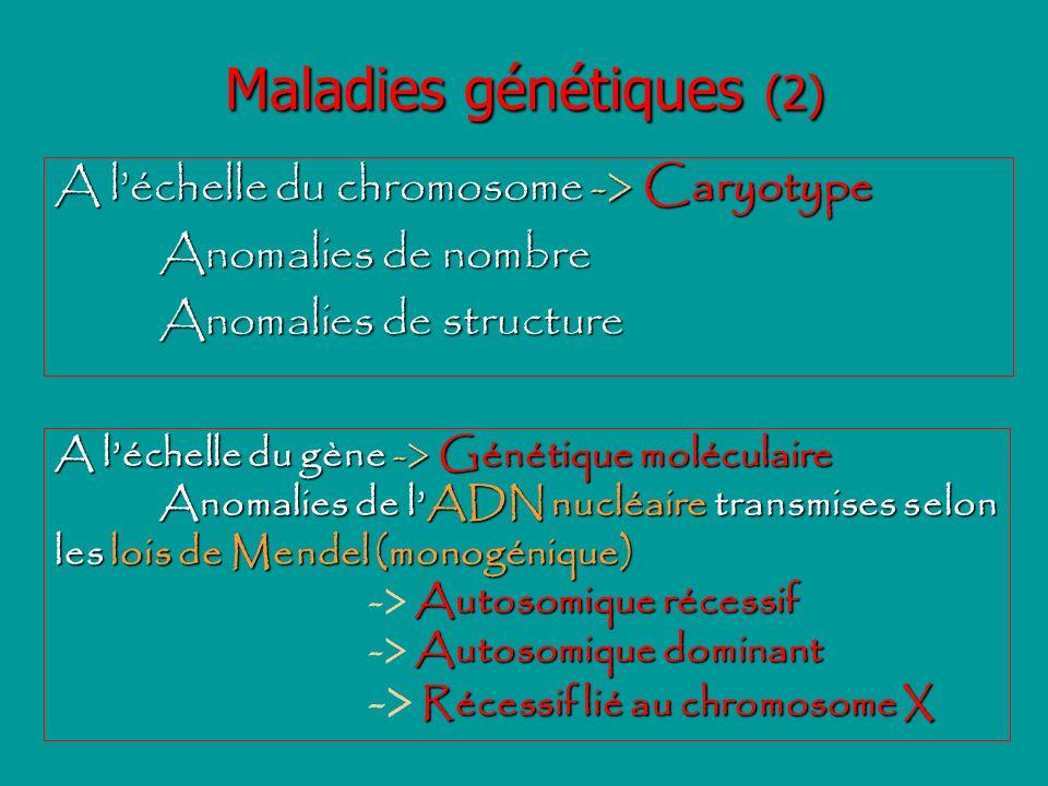 Maladies génétiques (2)