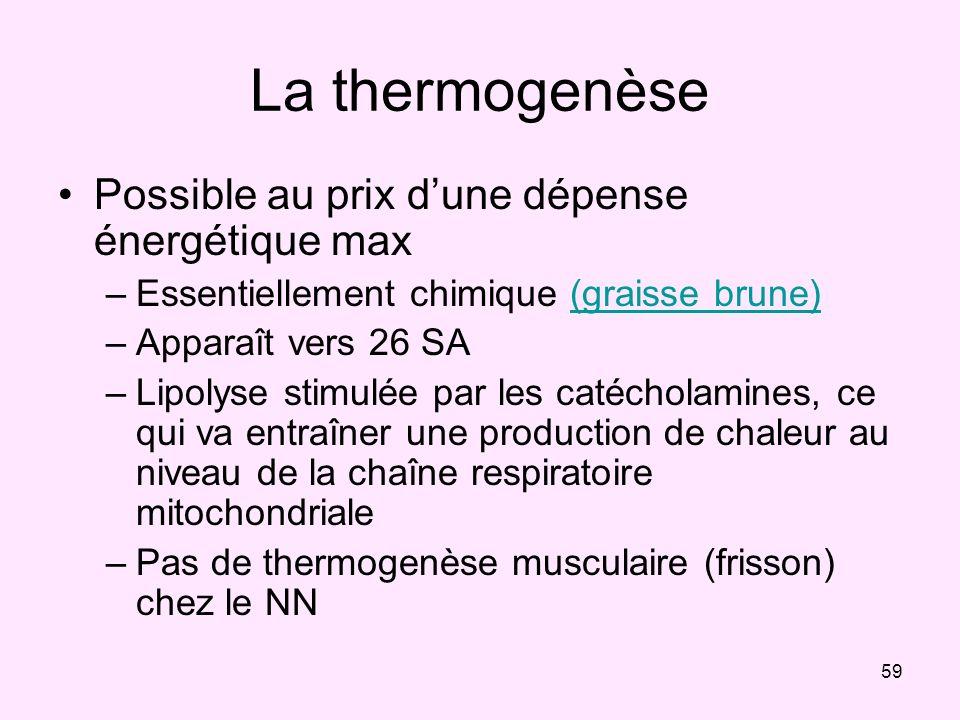 La thermogenèse Possible au prix d'une dépense énergétique max