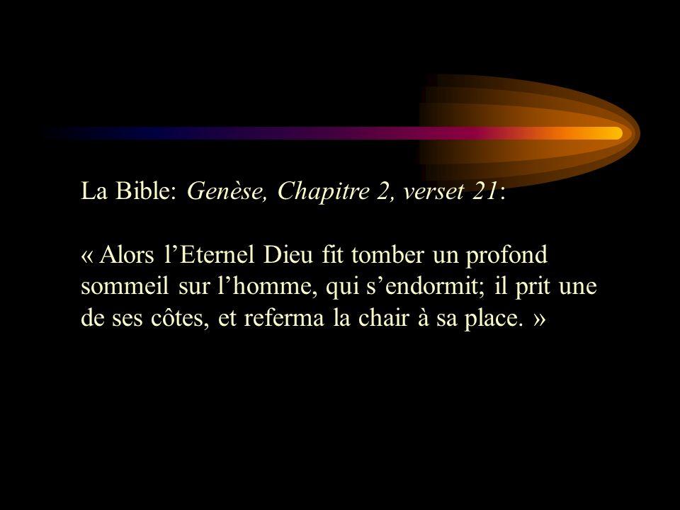 La Bible: Genèse, Chapitre 2, verset 21: