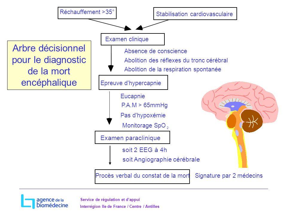Arbre décisionnel pour le diagnostic de la mort encéphalique