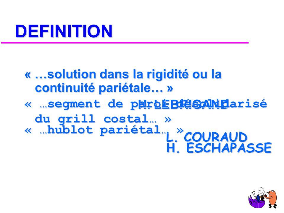 DEFINITION « …solution dans la rigidité ou la continuité pariétale… »