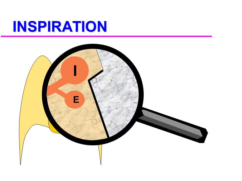 INSPIRATION I E