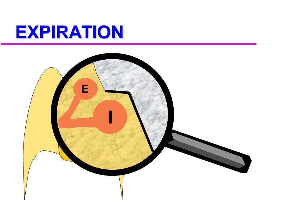 EXPIRATION E I