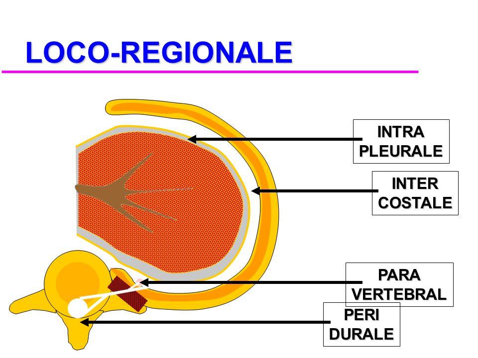 LOCO-REGIONALE INTRA PLEURALE INTER COSTALE PARA VERTEBRAL PERI DURALE
