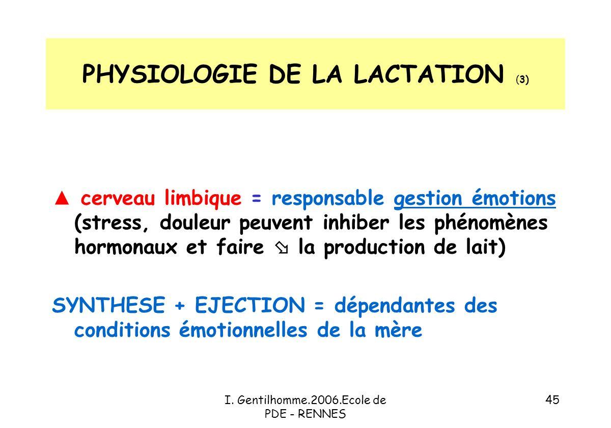 PHYSIOLOGIE DE LA LACTATION (3)