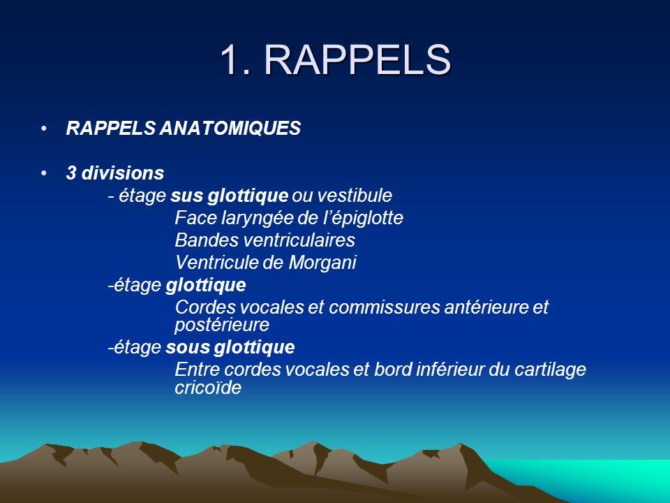 1. RAPPELS RAPPELS ANATOMIQUES 3 divisions