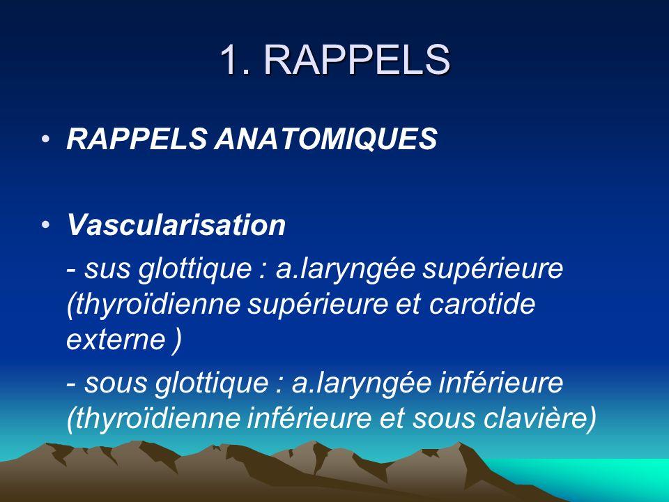 1. RAPPELS RAPPELS ANATOMIQUES Vascularisation