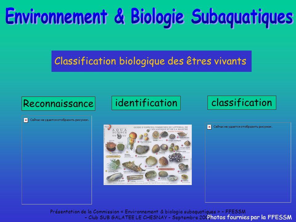 Environnement & Biologie Subaquatiques