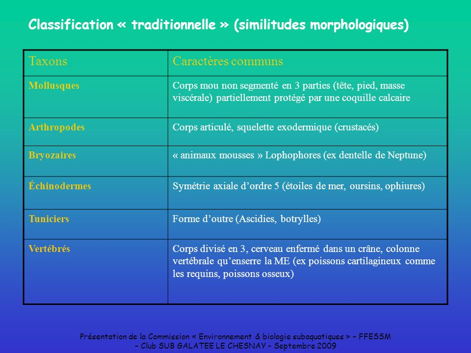 Classification « traditionnelle » (similitudes morphologiques)