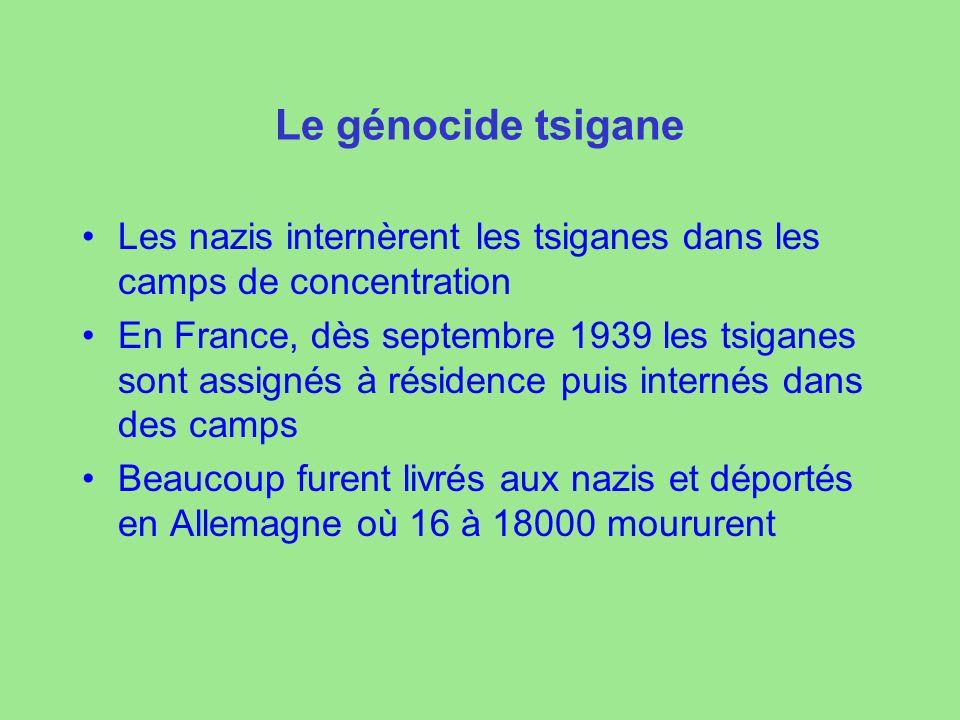 Le génocide tsigane Les nazis internèrent les tsiganes dans les camps de concentration.
