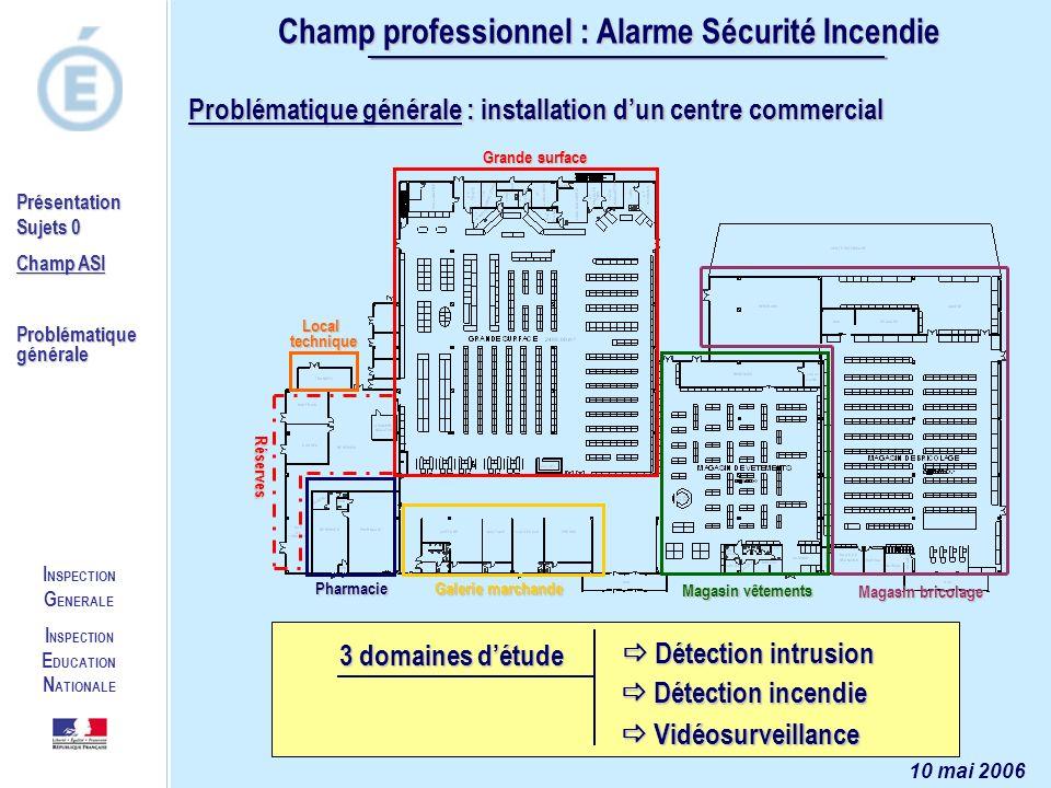 Champ professionnel : Alarme Sécurité Incendie