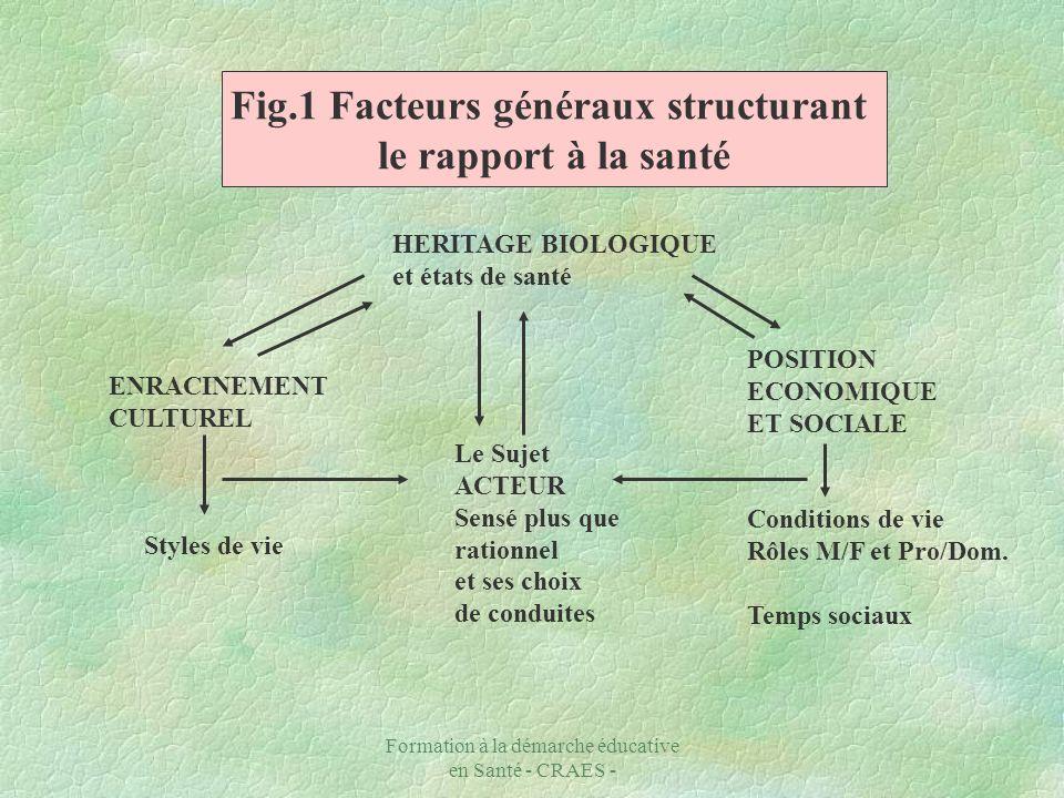 Fig.1 Facteurs généraux structurant