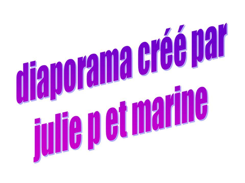 diaporama créé par julie p et marine