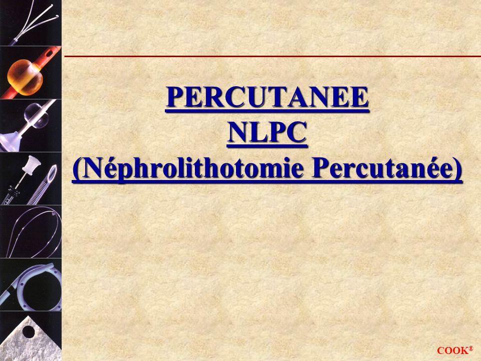 PERCUTANEE NLPC (Néphrolithotomie Percutanée)