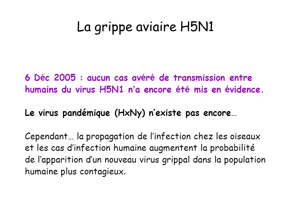 La grippe aviaire H5N16 Déc 2005 : aucun cas avéré de transmission entre humains du virus H5N1 n'a encore été mis en évidence.