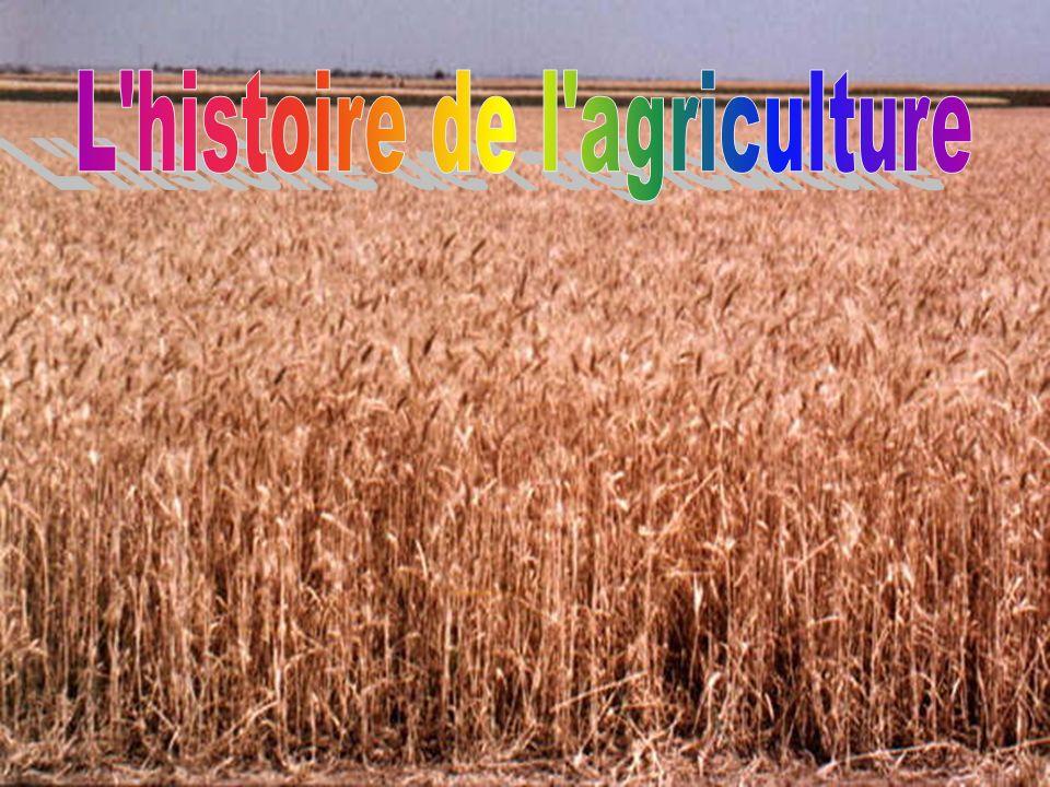 L histoire de l agriculture