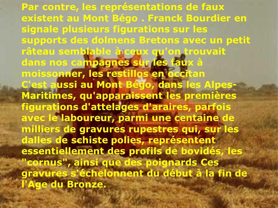 Par contre, les représentations de faux existent au Mont Bégo