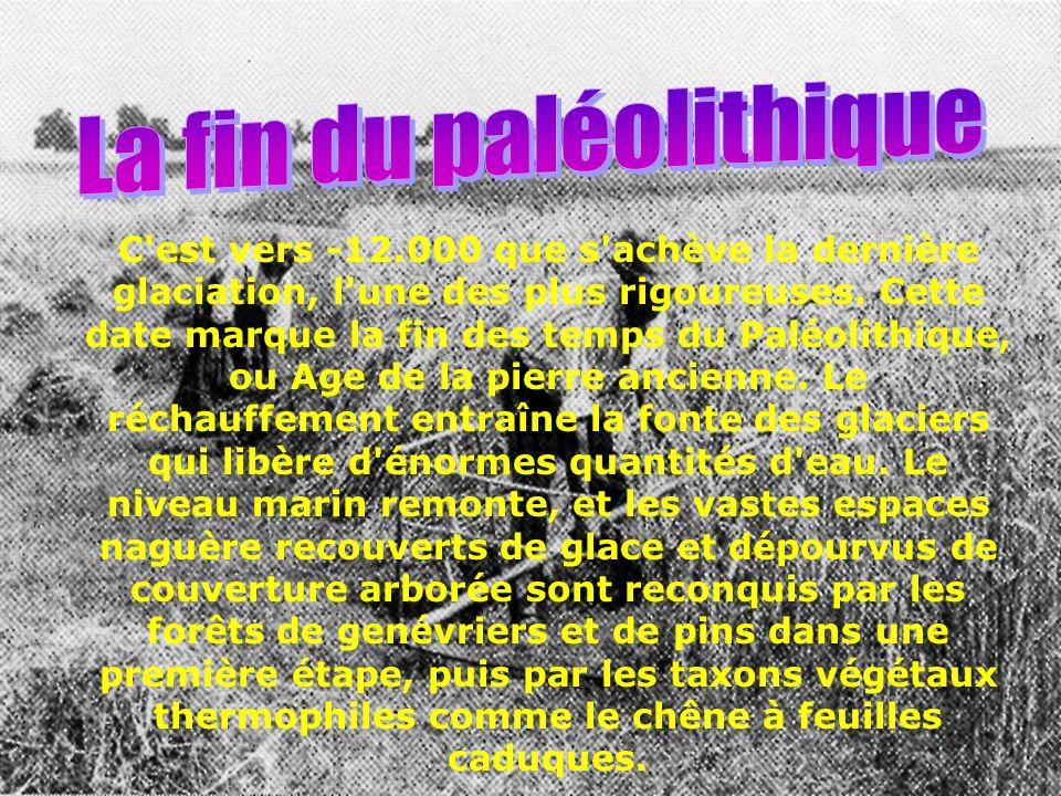 La fin du paléolithique