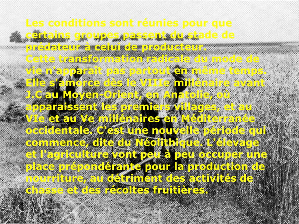 Les conditions sont réunies pour que certains groupes passent du stade de prédateur à celui de producteur.