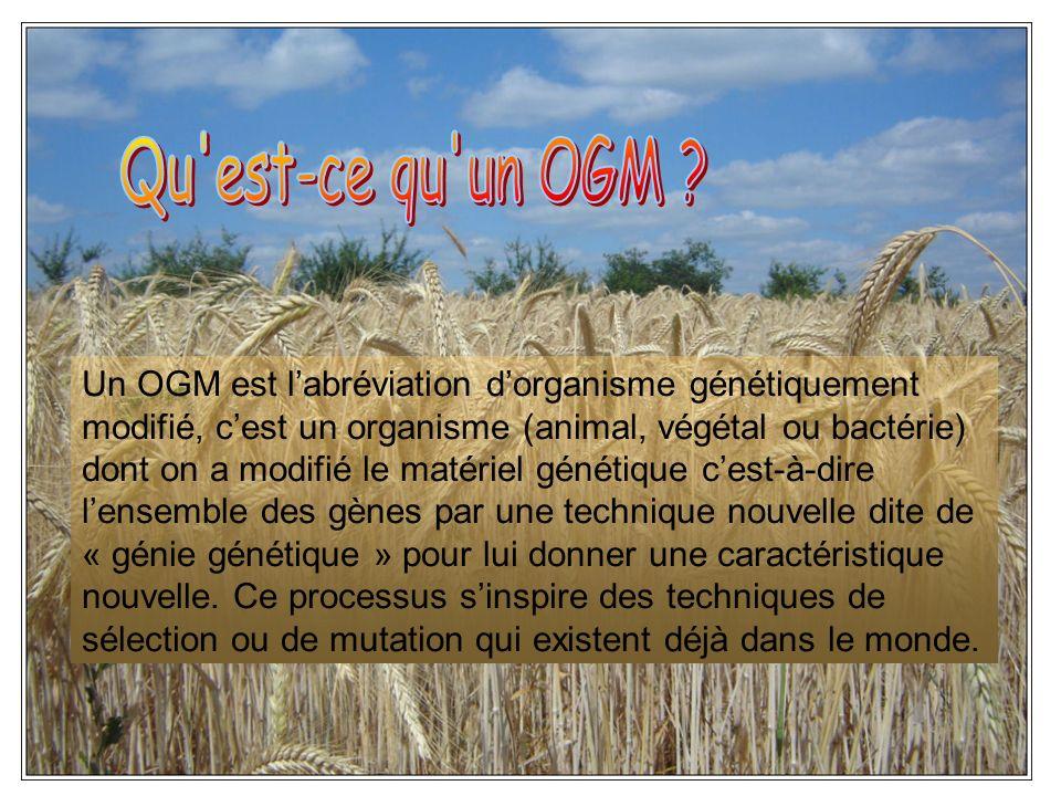 Qu est-ce qu un OGM