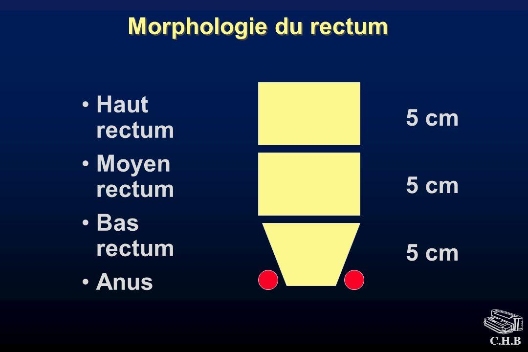 Morphologie du rectum Haut rectum Moyen rectum Bas rectum Anus 5 cm