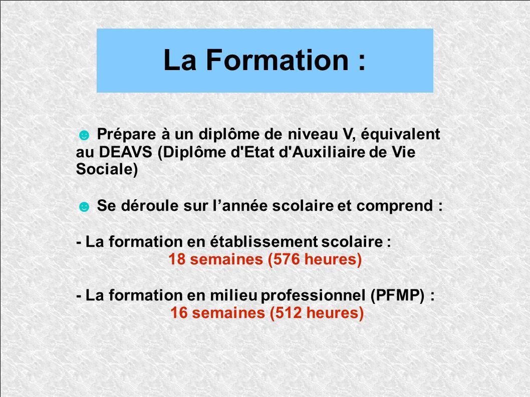 La Formation : ☻ Prépare à un diplôme de niveau V, équivalent au DEAVS (Diplôme d Etat d Auxiliaire de Vie Sociale)