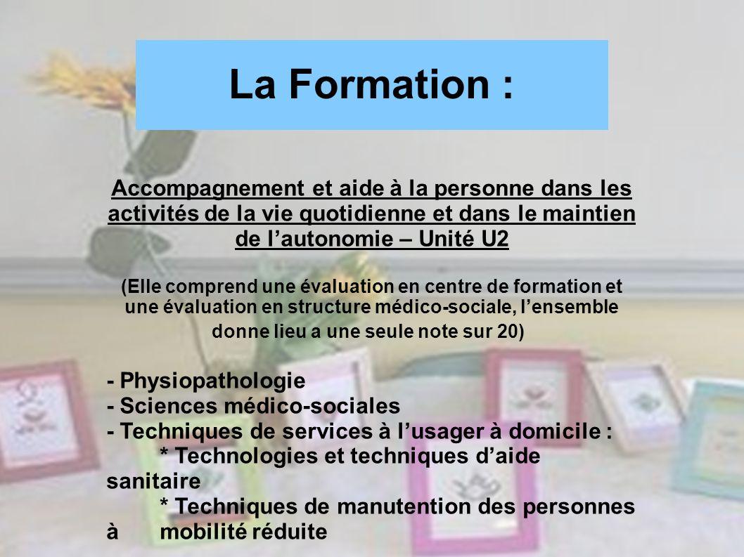 La Formation :Accompagnement et aide à la personne dans les activités de la vie quotidienne et dans le maintien de l'autonomie – Unité U2.